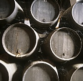 Wine barrels, Bodega Domecq, Jerez, Andalusia, Spain