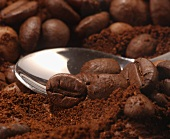 Coffee spoon, ground coffee and coffee beans