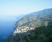 Blick über Riomaggiore, Ligurien, Italien