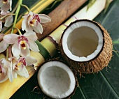Opened coconut with orchid flowers and bamboo canes