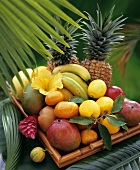 Exotic fruit on bamboo tray