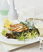Grilled salmon steak on salad