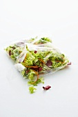 Mixed salad leaves in a plastic bag