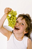 Small boy eating a bunch of grapes