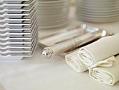 Fabric napkins and ashtrays