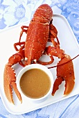 Lobster with a bowl of lobster soup
