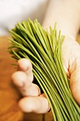 Hand holding a bunch of chives
