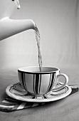 Eine Tasse Tee mit heißem Wasser aufgiessen