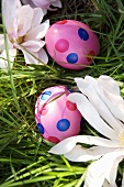 Two spotted pink Easter eggs in grass