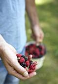 Hand holding freshly picked berries