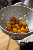 Hands holding red and yellow cocktail tomatoes in colander