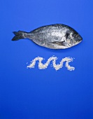 Fresh gilthead seabream with a rice 'wave'