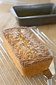 A spiced apple loaf on a cake rack