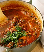Beef and tomato ragout