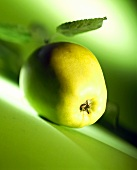 A Golden Delicious Apple on Green Background