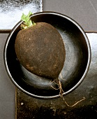 A Black Radish in a Black Bowl