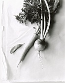 Mangetout, carrot and turnip (black and white photo)