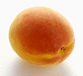A Whole Apricot