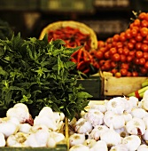 Vegetable Market: Garlic, Herbs, Chilis and Tomatoes