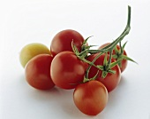Grape Tomatoes on the Stem
