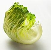 Iceberg Lettuce Leaf