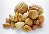 Nut Still Life