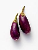 Two Baby Eggplants