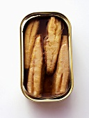 An Opened Can of Sardines from Overhead