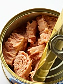 A Can of Tuna Fish, Partially Opened (Close Up)