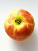 A Cortland Apple