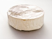 Camembert in Paper Wrapping