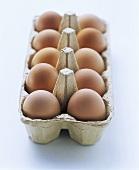 Ten brown eggs in egg box