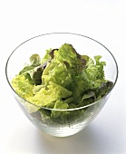 Mixed Lettuce in a Glass Salad Bowl