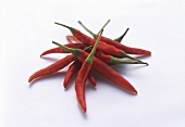 Red Thai Hot Peppers