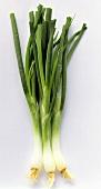 Three Green Onions