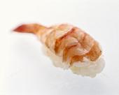 One Ebi Nigiri Sushi