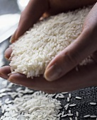 A Handful of Uncooked Rice