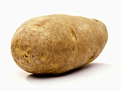 A Russet Potato