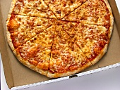 A Cheese Pizza in a Pizza Box
