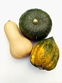 Three Types of Squash
