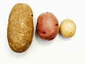 Three Potatoes: A Russett, a Red and a New Potato