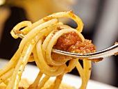 Spaghetti with Meat Sauce on a Fork