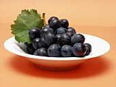Concord Grapes in a Bowl