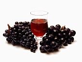 Glas Rotwein und verschiedene blaue Trauben