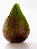 One Fig