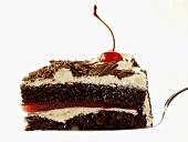 Slice of Black Forest Cake on a Cake Server