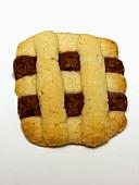 Checkered Vanilla and Chocolate Cookie