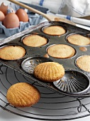 Madeleines in Baking Pan; Cooling Rack