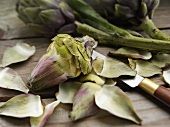 Leaves Peeled From Artichoke; Knife