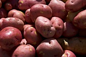 Many Whole Red Potatoes